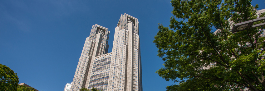新宿中央公園から見た東京都庁